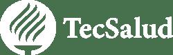 Logo TecSalud-2